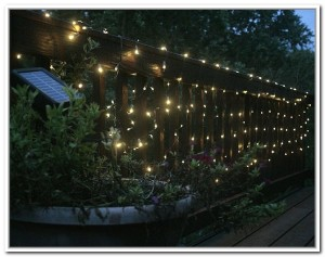 string-solar-lights-garden